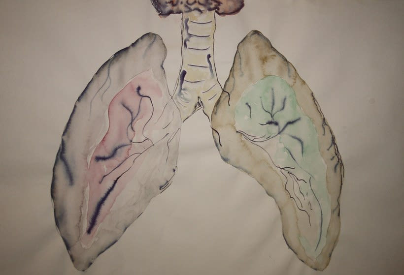 Dibujo / Drawing || Ilustración / Illustration 9