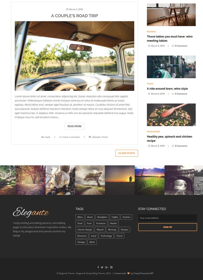 Elegante - Clean & Elegant Blog Theme 5