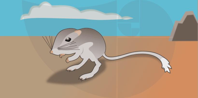 Ilustraciones para la ciencia y la educación 4