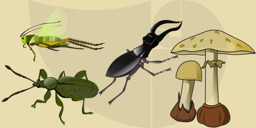 Ilustraciones para la ciencia y la educación 6
