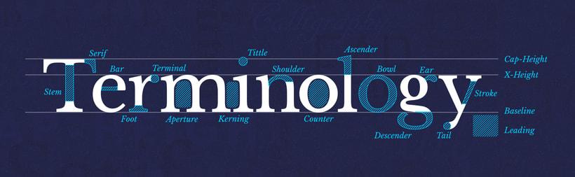 Aprende y domina la terminología tipográfica con Type Terms 1