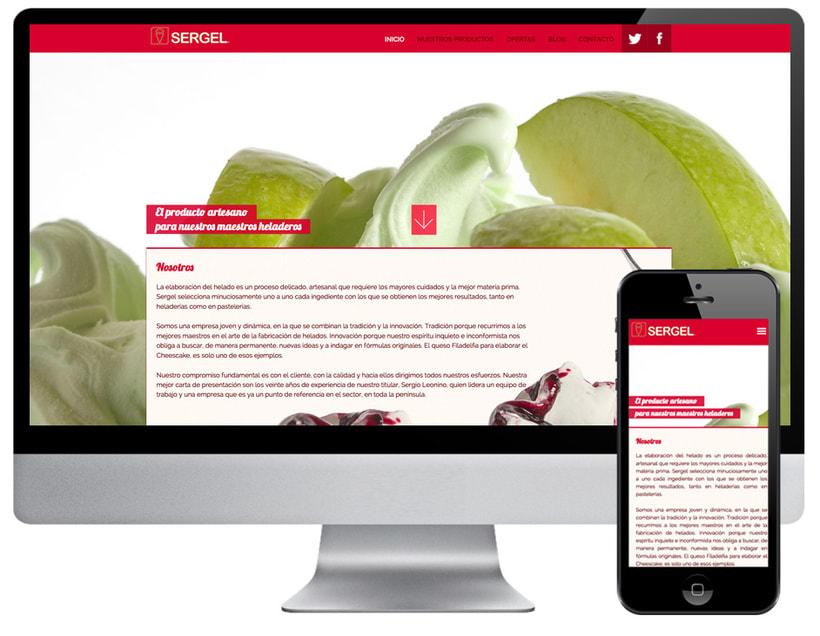 Diseño web Sergel -1