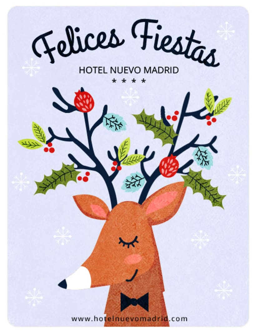 Newsletter de Navidad para Hotel Nuevo Madrid 2