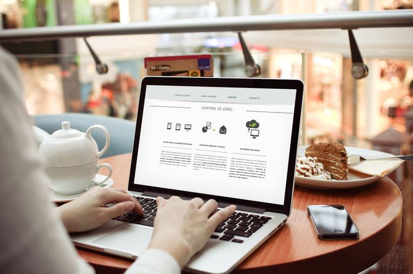 Diseño de página web 6
