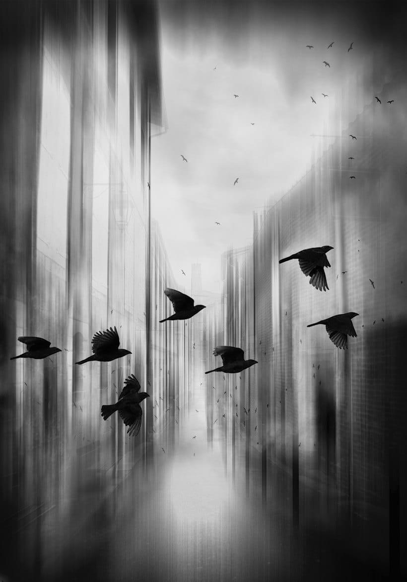 Mi Proyecto del curso: Fotografía para la imaginación -1