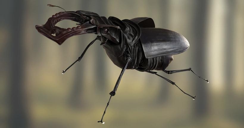 Deer beetle -1