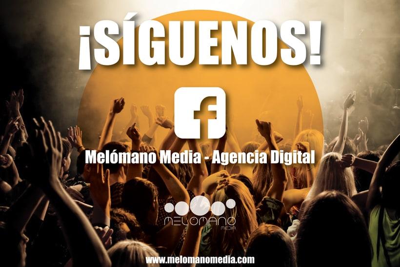 Melómano Media-Agencia Digital  4