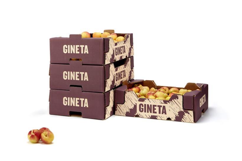 GINETA (frutas) 6