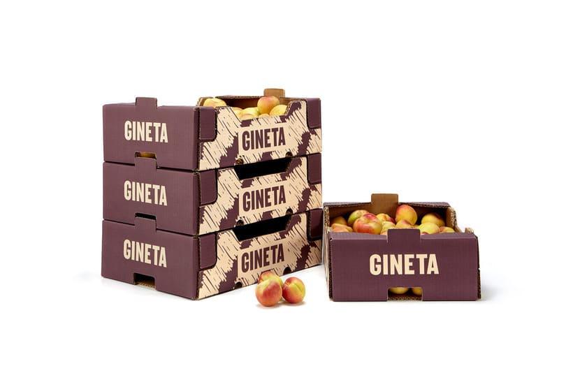 GINETA (frutas) 7