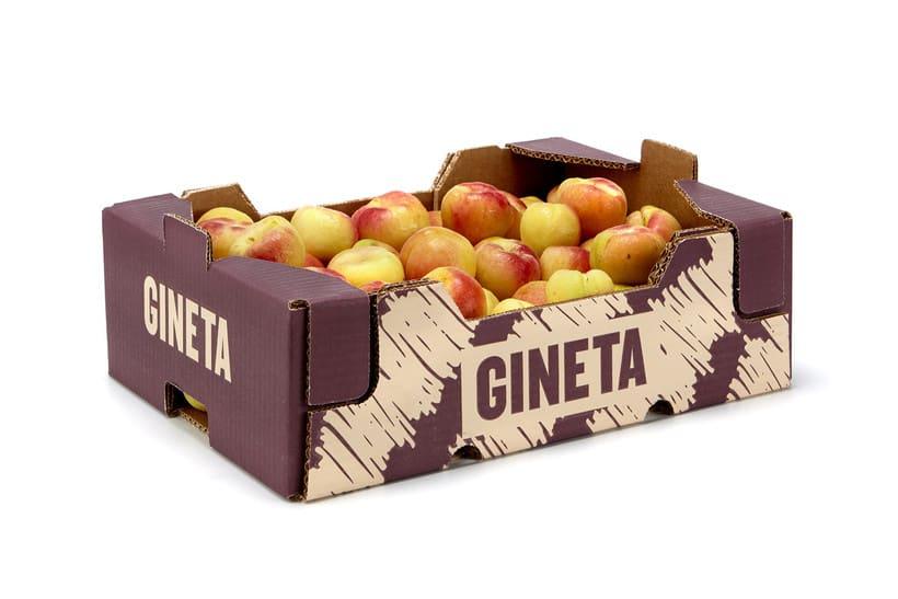 GINETA (frutas) 3