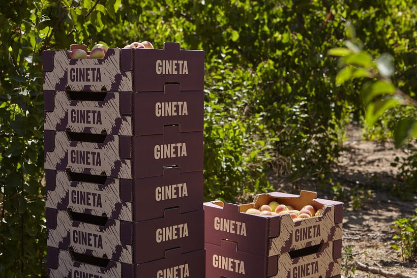 GINETA (frutas) 14