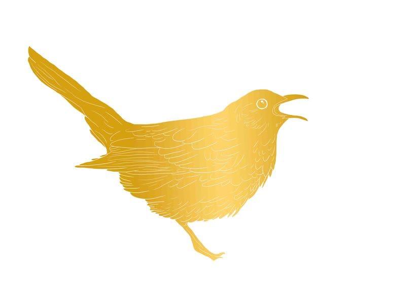 wine & birds 0