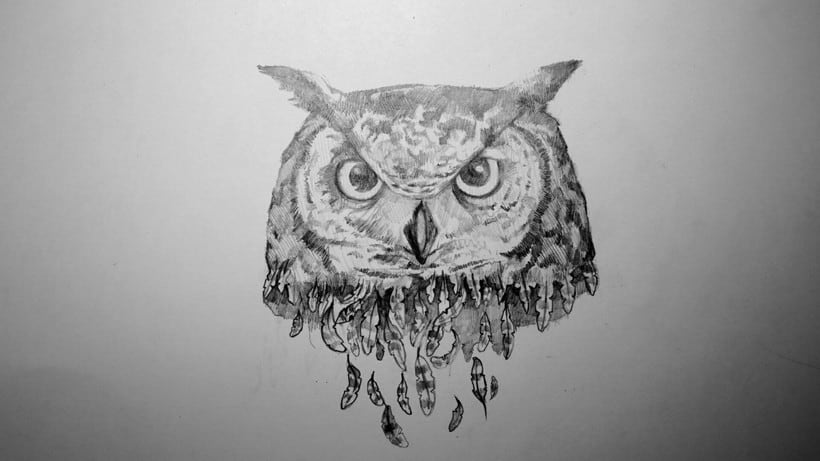 The old owl! 0