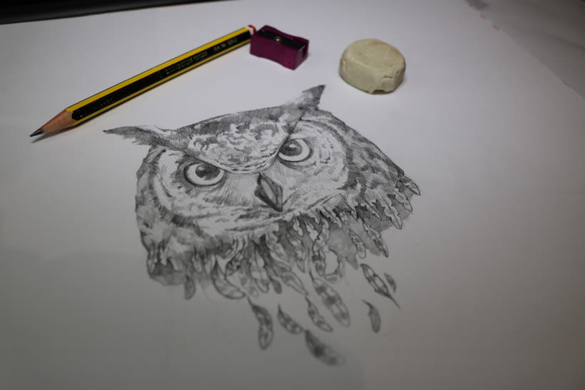 The old owl! 1