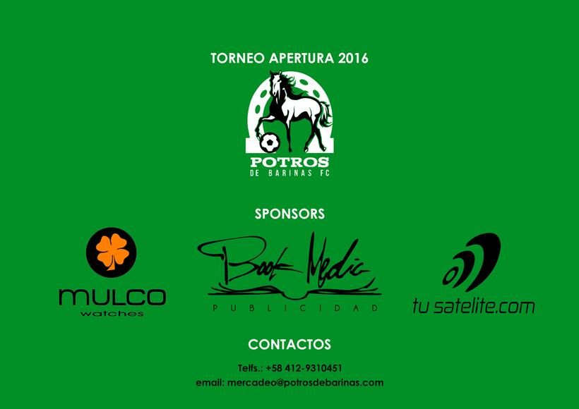 Brochure para Sponsorships del equipo FC Potros de Barinas 7