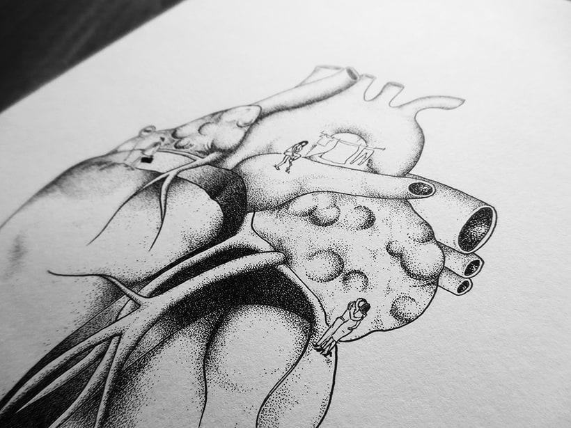 Órganos, dulce hogar 4