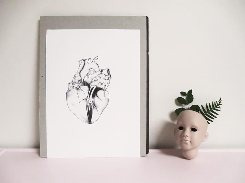 Órganos, dulce hogar 6