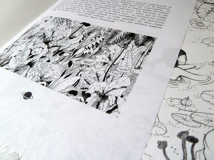 Fanzine: Relatos Cortos de Jungla Cometa. 8