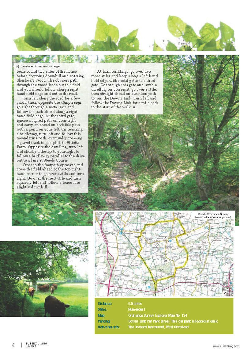 Maquetación de páginas - Sussex Living Magazine 6