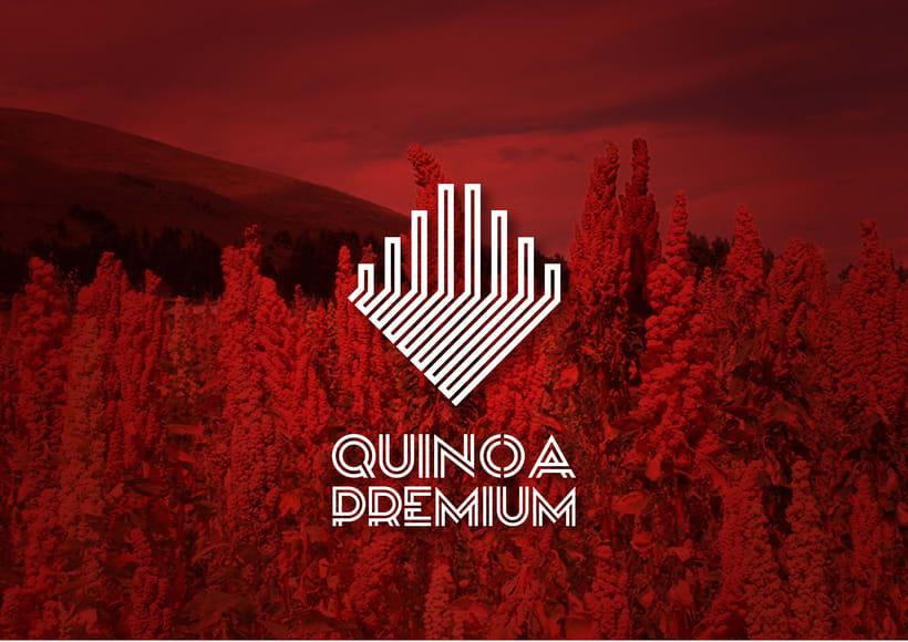 Imagen Corporativa Quinoa Premium 0