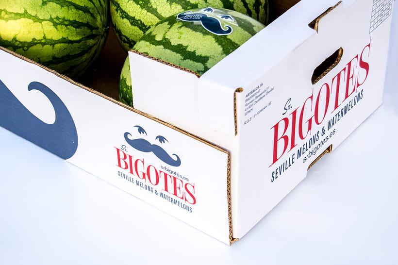 Diseño de marca para Sr. Bigotes 3
