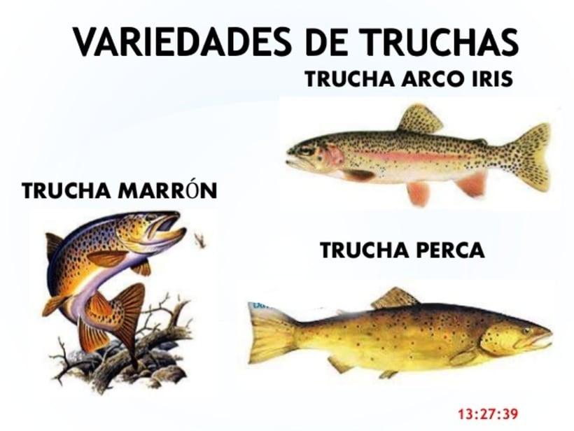 Trucha Infernal (Mi primer gran tatuaje) 1