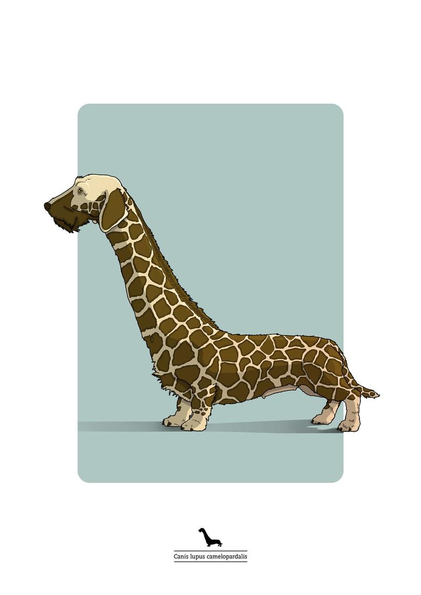 Animalarium 7