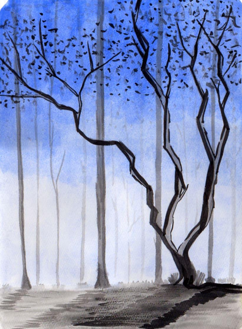 Bosque Húmedo 0