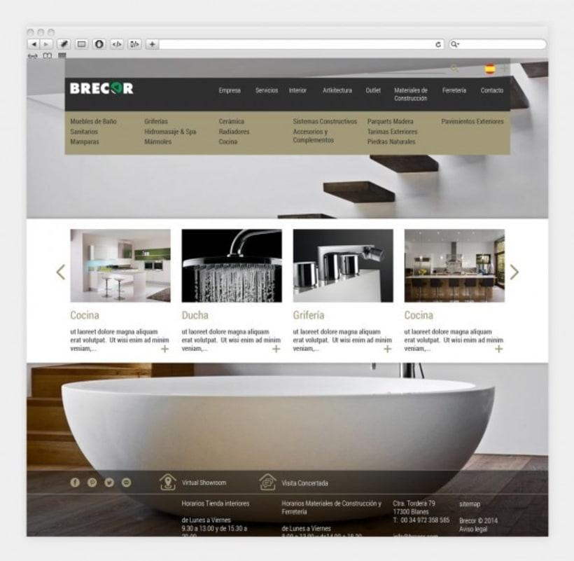 Diseño y programación de brecor.com 0
