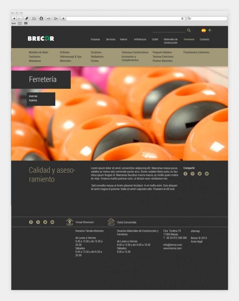 Diseño y programación de brecor.com 3