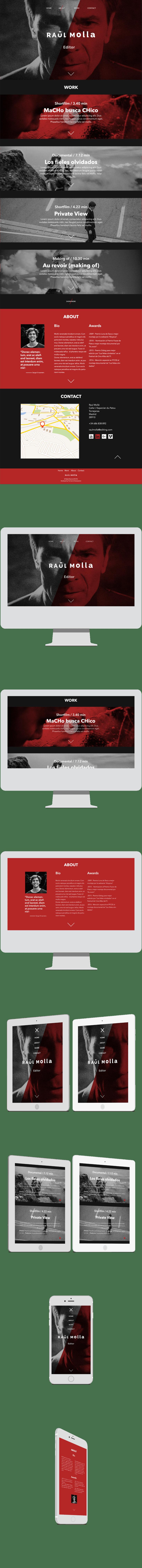 Mi Proyecto del curso: Raul Molla - Editor Portfolio 2