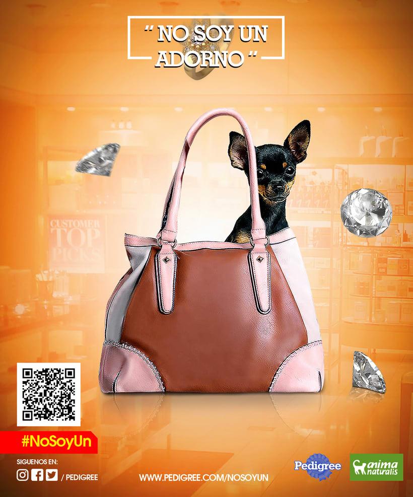 campaña contra el maltrato animal 2