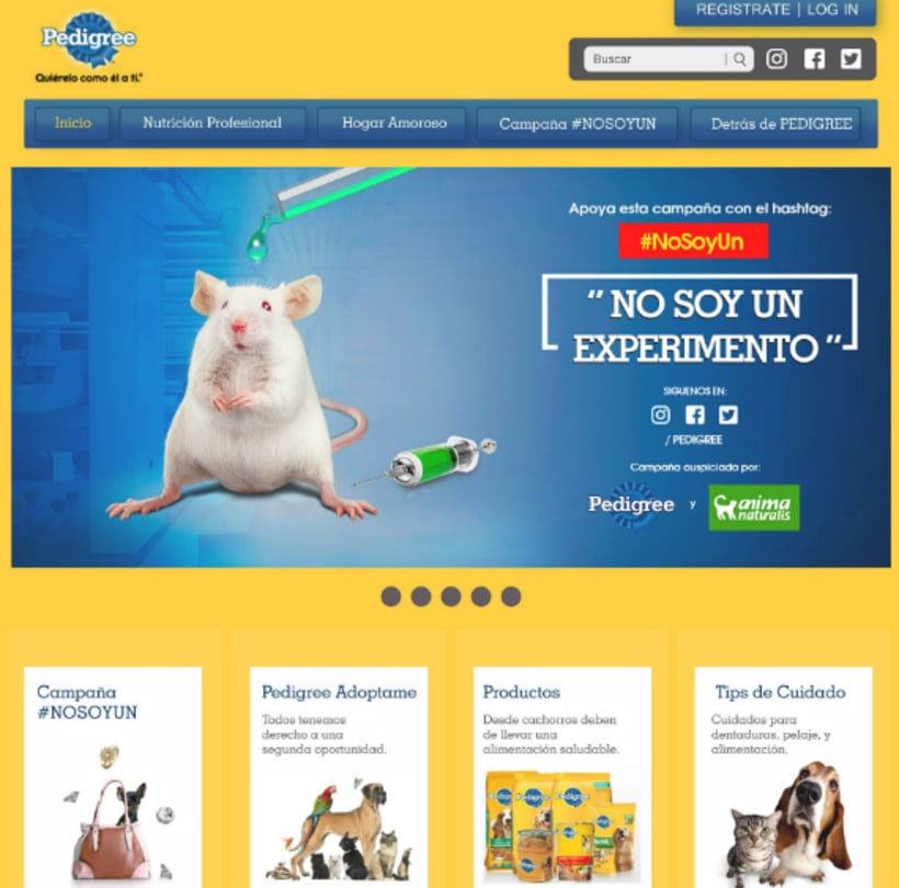 campaña contra el maltrato animal 4