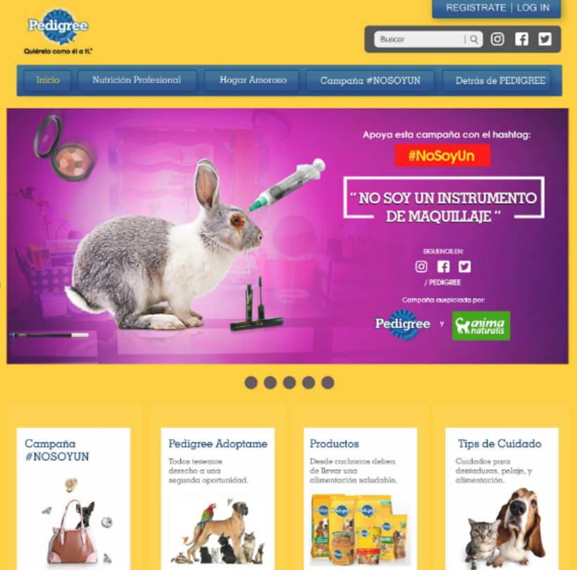 campaña contra el maltrato animal 6