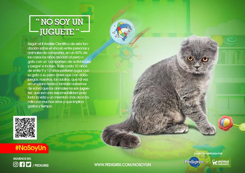 campaña contra el maltrato animal 11