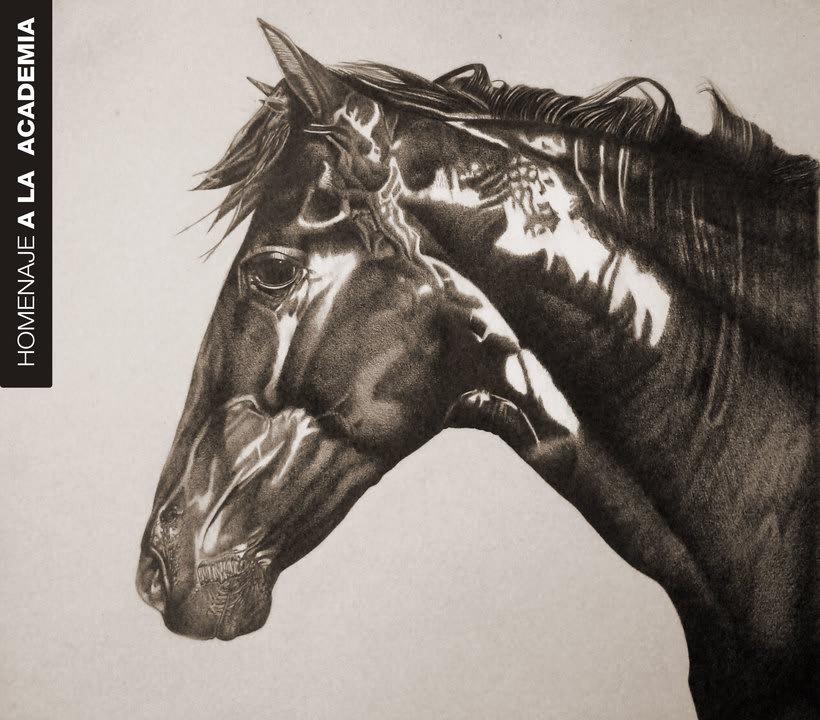 Big Horse -1