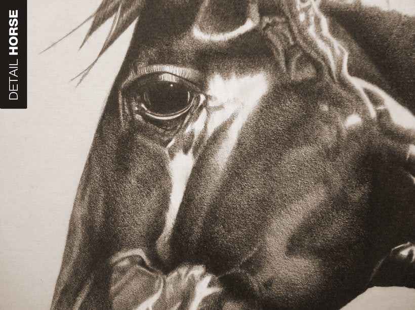 Big Horse 1