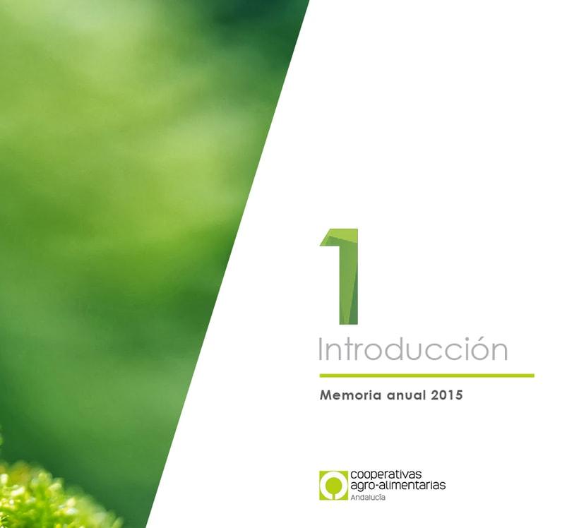 Diseño editorial Memoria anual 1
