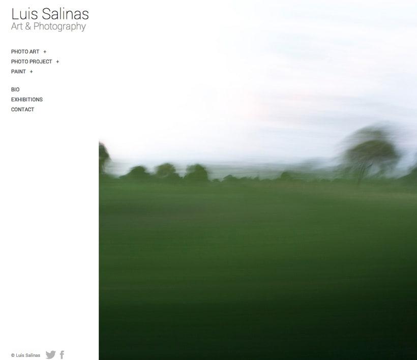 L.S. artist website 0