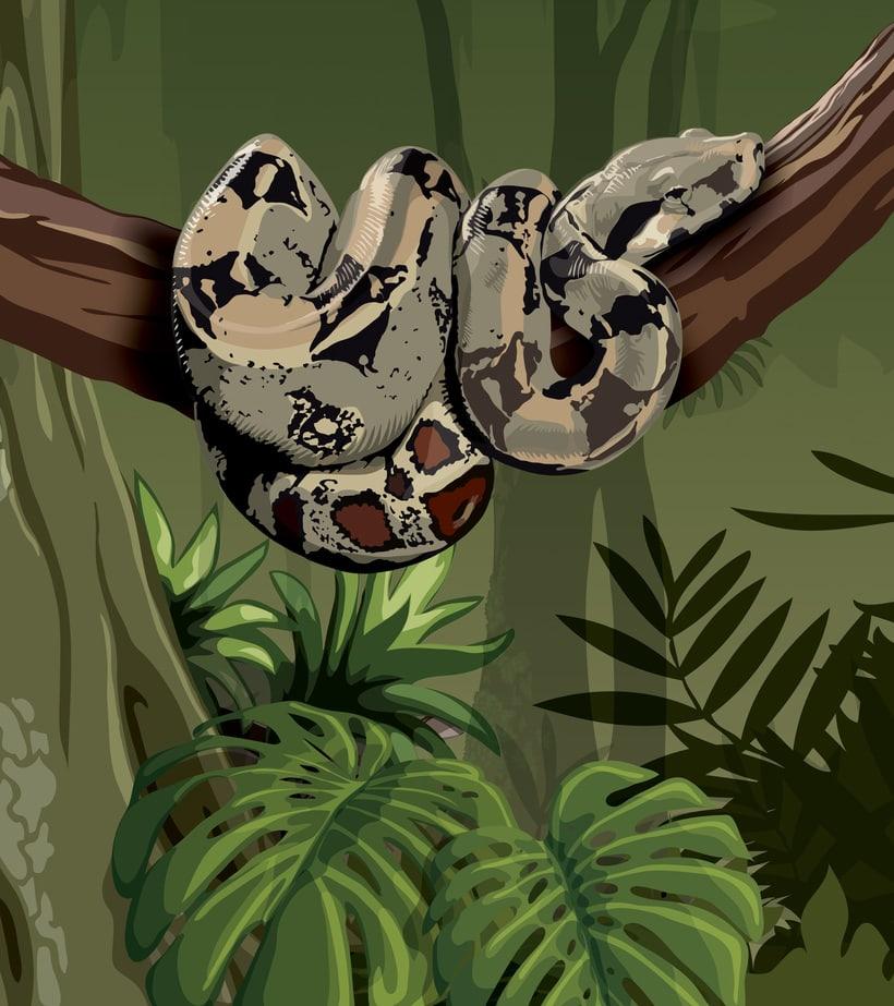 Ilustraciones para Parque Explora (museo de ciencia interactivo) 0