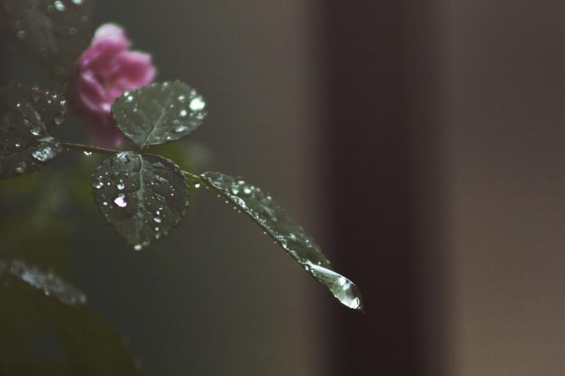 Rain 0