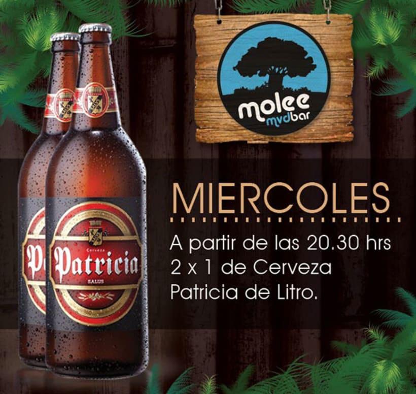 Molee Bar 0