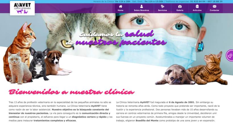 Diseño web Ayavet -1