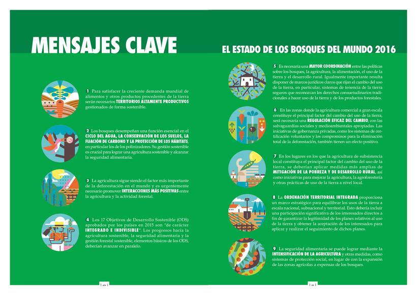 FAO (ONU). Anuario / Bosques 3