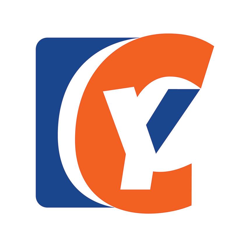 Manual de Identidad - Your Company - Marca para Banca Empresarial 13
