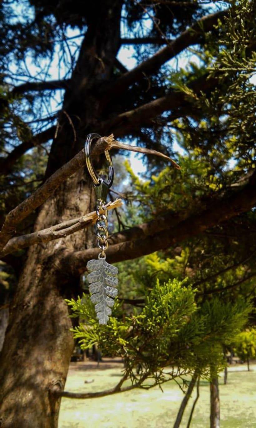Mirando al Bosque a través de la Orfebrería 5