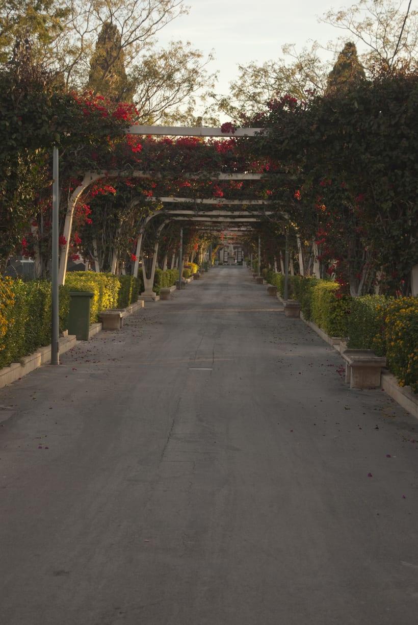 Cementerio de Alicante 0