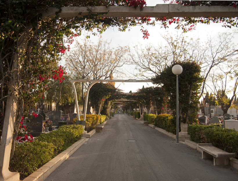 Cementerio de Alicante 1