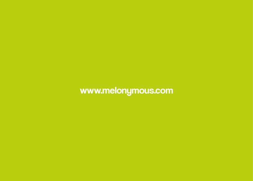 Manual de Identidad - Melonymous 17