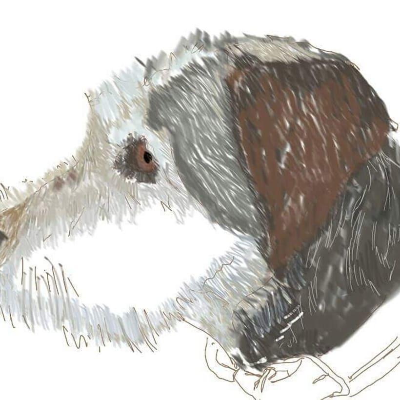 Ilustraciones por encargo. 5